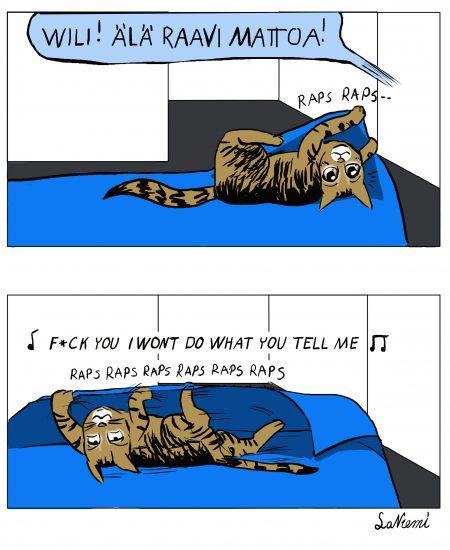 Perus kissa