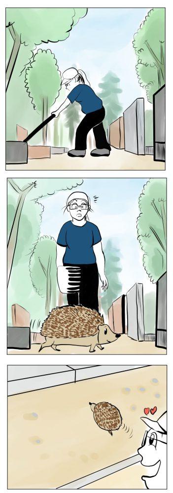 Pieni kipittäjä